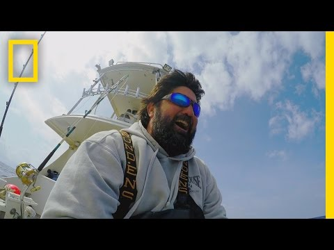 Catch Of The Week - Burn Blubber | Wicked Tuna: Outer Banks