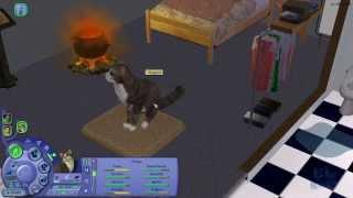 [EL559] The Sims 2 - 08 'Nove Mesi di Tragedie' + Extra