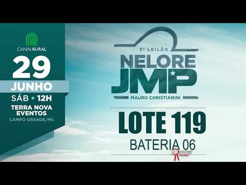 LOTE 119