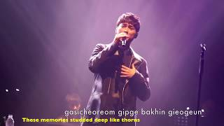 161202 BUZZ - THORN (가시) LIVE PERFORMANCE [LYRIC-ENGSUB]