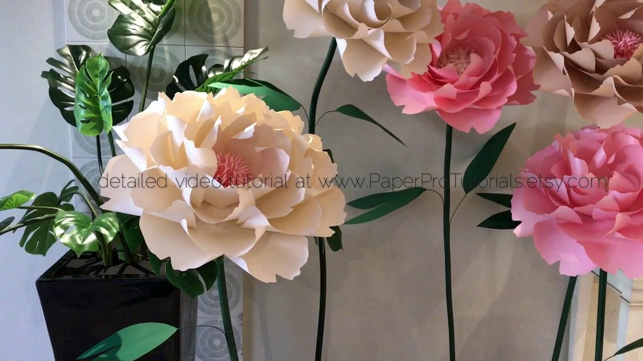 Freestanding Paper Flower Peony Video Tutorial Youtube