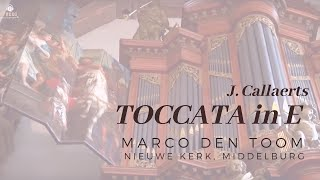 J. Callaerts, Toccata in E | MARCO DEN TOOM - Middelburg, Nieuwe Kerk (NL)