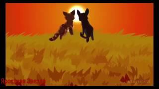 Коты-Воители Листвичка, Ласточка и Сумеречница - Подруга моя ( Заказ )