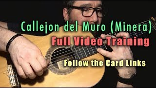 Callejon del Muro (Minera) by Paco de Lucia - Full Video Training - Card Links