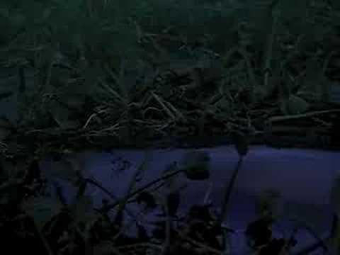 Dracula 2000 Trailer