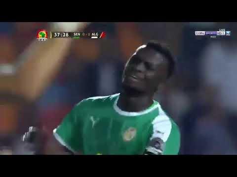 Senegal v Algeria 0-1 All Goals & Full Highlights CAF Final 2019