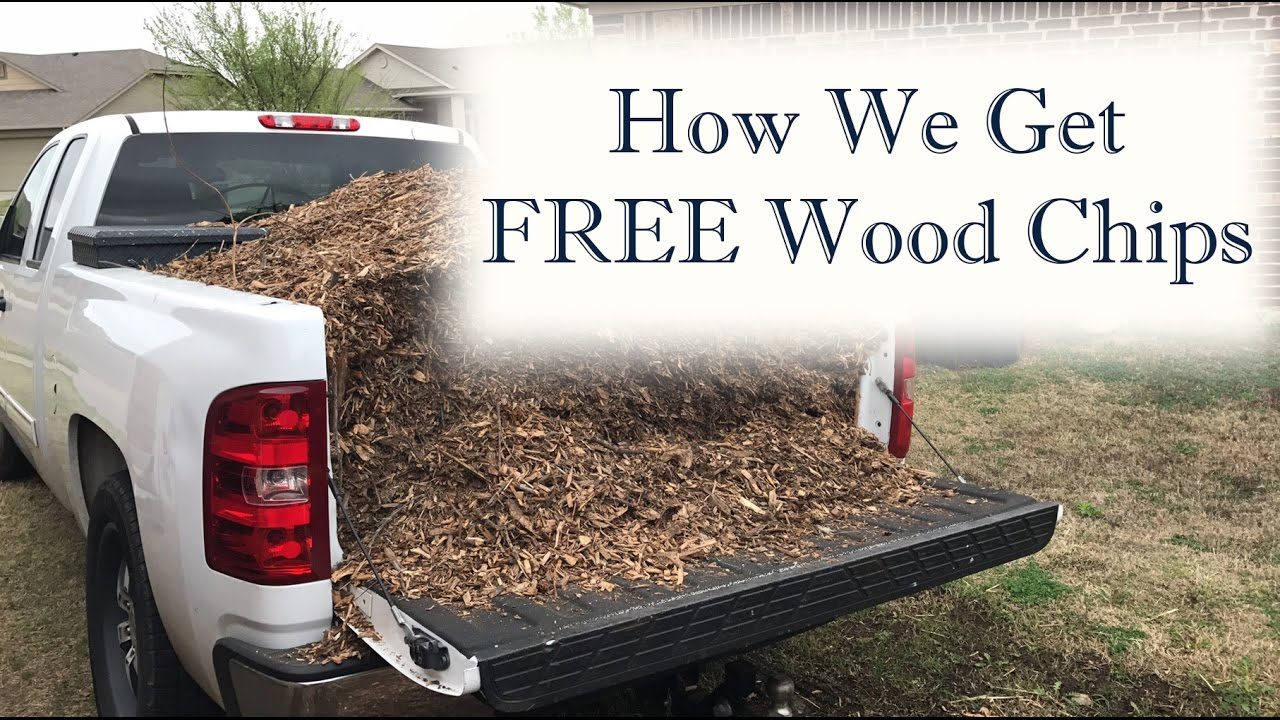 Where To Get Wood Chips ~ How we get an unlimited supply of free wood chips youtube