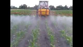 Подкормка кукурузы водоростворимыми удобрениями