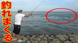 神の渦にエサ無し針を入れるだけであの魚が永遠に釣れた!!!!