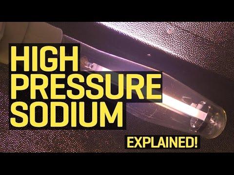 Grow Lights Explained: High Pressure Sodium (HPS)