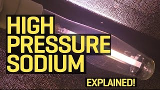 Grow Lights Explained: High Pressure Sodium (HPS)
