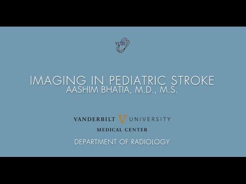 VUIIS Friday Seminar Series: Imaging in Pediatric Stroke