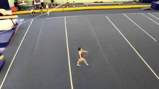 School competition, floor, 1 junior level
