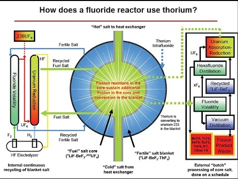 LFTR Liquid fluoride thorium reactor interview