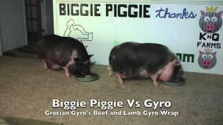 Biggie Piggie Vs Grecian Gyro's Beef And Lamb Gyro Wrap V2.0.com