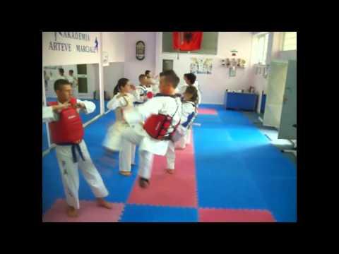 Ekipi Tirana Taekwondo