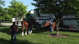 Justify Leaving Churchill Downs for The Belmont