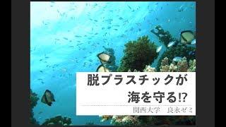 【プラスチック削減コンテスト応募作品No3】脱プラスチックが海を守る!?