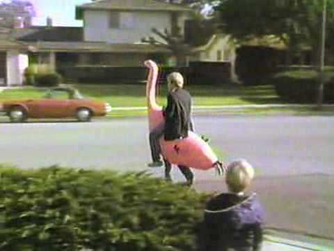 Pink Ostrich Halloween Costume, 1985   Part 1   The Demonstration   YouTube
