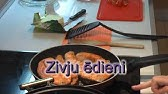 zhivitsa pin cu varicoză)