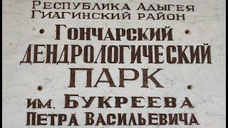 Дендропарк Букреева в Адыгее.