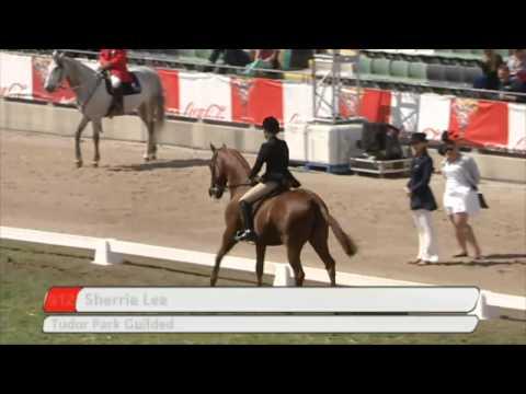 2014 Garryowen Equestrienne Turnout - 80th anniversary - 2014 Royal Melbourne Show