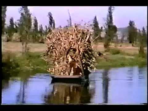 xochimilco historia de un pasado y presente