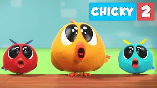 Where's Chicky? NEW SEASON   CHICKY'S FAMILY   Chicky Cartoon in English for Kids