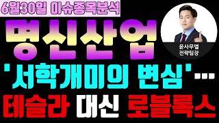 명신산업(009900) - '서학개미의 변심'…테슬라 대신 로블록스