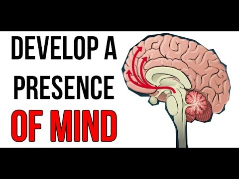 How to Develop Presence of Mind - 33 Strategies of War Analysis