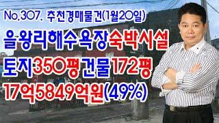 [No.307 추천경매물건]을왕리해수욕장숙박시설/토지3…