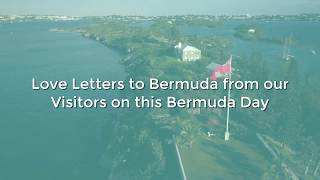 Love Letters to Bermuda from our Visitors