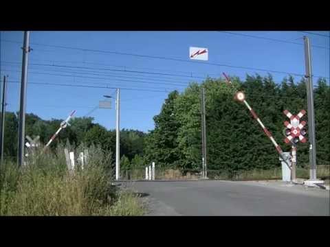 Spoorwegovergang//RR-crossing//Passaga a niveau Froyennes, Rue d