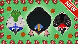 MOPE.IO CASSOWARY TROLLING! *4 NEW BIRDS* Peacock, Woodpecker, Chicken u0026 Cassowary (Mopeio Update)