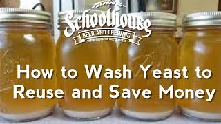 The Basics of How to Wash Yeast (Grains to Glass S2C5 2018)