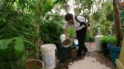 Florida Keys Mosquito Control - Domestic Program