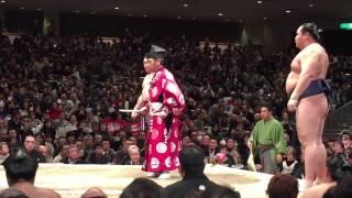 Sumo-Tokyo Tournament 2015