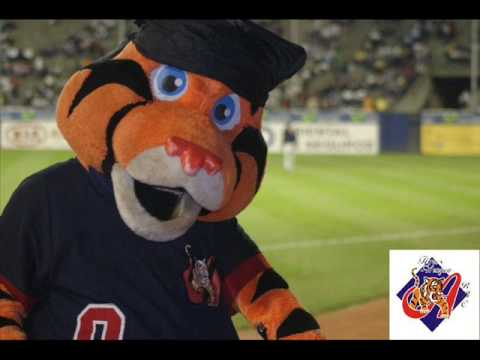Tigres de aragua campeon