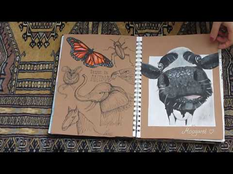 A* GCSE Art Sketchbook Flip-Through (2015-2017)