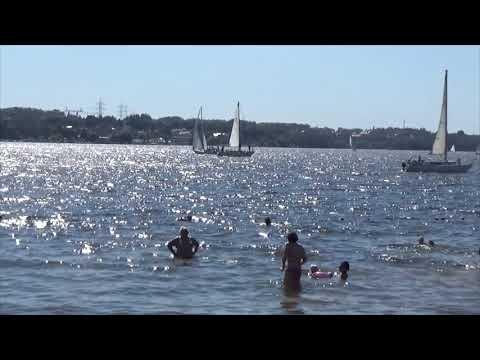 Клязьминское водохранилище. Пляж Пироговская ривьера.11.08.2018