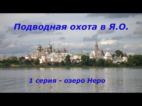Виноград в Ярославской области -> Ярпортал, форум Ярославля