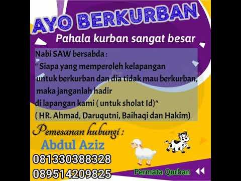 Video Promosi Qurban Youtube