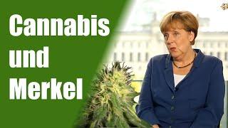 Youtube-Star LeFloid befragt Merkel zu Cannabis   DHV News #45