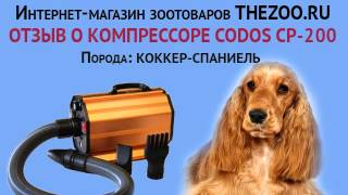 Отзыв: Олег Вологоев, Codos CP-200, порода - коккер-спаниель