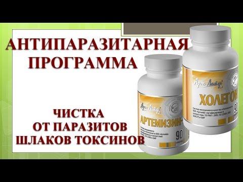 Препараты от глистов для лечения взрослого человека, какие
