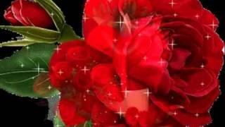Xin Tình Yêu Giáng Sinh -  Bình ca 4 (Phạm Duy) - Short Strophe KB