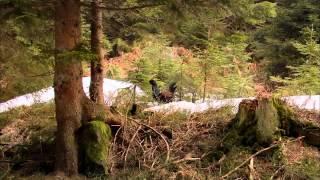 Дикая природа Германии (серия 2)