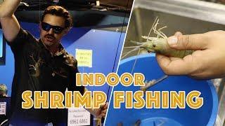 INDOOR SHRIMP FISHING | Whoa That's Weird