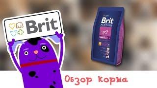 Обзор корма Brit Premium Adult S