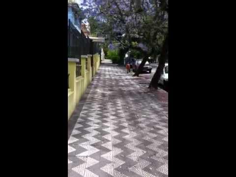 Streets of Porto Alegre, Brazil
